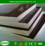 Reusable Poplar Commercial Plywood with Film Faced for Framework Building