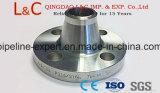 Aço Carbono Aço forjado em aço inoxidável flanges DIN flange do bocal de soldadura
