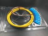 La fibra óptica de 12 núcleos enlazados en forma de espiral para la red de transmisión y CCTV Wireless