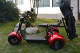 [1500و] درّاجة ثلاثية كهربائيّة مع [غلف بغ] حامل
