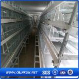 Jaula de la granja de pollo con precio de fábrica