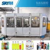 Jugo / Té / Máquina de Embotellado de Bebidas / Línea de Producción