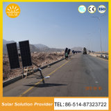 Venta caliente 30W 60W de las luces de la Energía Solar iluminación LED precio de fábrica de Energía Solar