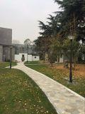 Larga vida útil Jardín de Luz solar integrada