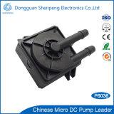 Una mini pompa da 12 volt di CC per circolazione di raffreddamento del LED