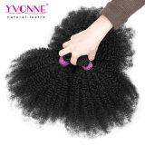 Yvonne 공장 가격 Virgin 머리 직물 브라질 머리는 아프로 곱슬머리를 묶는다