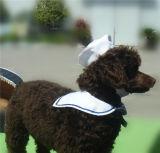 Legame e cappello di arco del blu marino per gli animali domestici