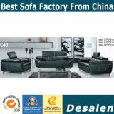 Sofá moderno preto, mobília de couro do sofá (C40)