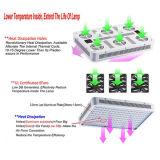 LED는 가벼운 공장 직접 판매 가득 차있는 스펙트럼 120PCS LEDs 두 배 칩 600W 플랜트를 증가한다 LED 빛을 증가한다