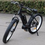 고품질 산 En 15194를 가진 전기 자전거 자전거