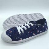 Женщин Hotsale ЭБУ системы впрыска Canvas обувь повседневная обувь с хорошей ценой (HP0315-4)