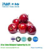 Polvo puro orgánico natural del polvo el 100% Apple de Apple de la oferta de la fábrica del GMP