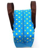 美しく青いクーラーの涼しいピクニックハンドバッグの昼食によって絶縁される袋