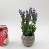 Decoração artificial dos bonsais do cimento da alfazema