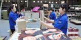 De Verpakkende Dienst van de plastic Doos in het Entrepot van China