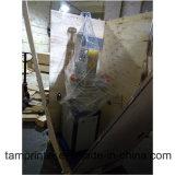 Máquina de carimbo quente de vidro do baixo preço Tgm-100