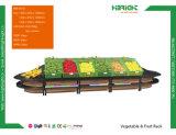 Armazenar o Shelving e as cremalheiras da fruta e verdura