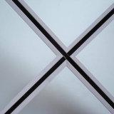Het Net van het plafond T, de Staaf van het Plafond T