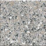 素晴らしい灰色の花こう岩のモロッコの市場のための直接工場価格