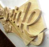 macchina per incidere di legno del router di CNC 3D da vendere
