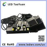 반점 가벼운 365nm 레이블 Pinter UV 램프