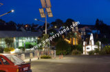 Alto brillo de 200W de protección IP68 calle la luz solar