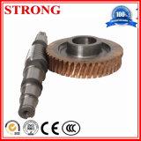 Глист машинного оборудования высокой точности стальные и шестерня бронзы в редукторе