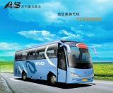 中間のサイズバス-魅了(連続8M A5)