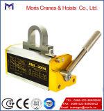 Elevatore magnetico dell'elevatore della gru resistente magnetica della gru