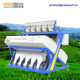 5000 + pixel Real RGB Rice Mill Color Sorter Vsee