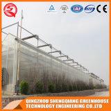 Serre chaude en aluminium de feuille de polycarbonate de profil de bâti en acier d'agriculture