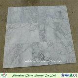 La couleur blanche marbre Arabescato avec la grande fleur blanche pour des mosaïques