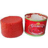 Inserimento di pomodoro inscatolato con l'alta qualità e Brix in 28-30