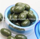 Pillules de régime normales de fines herbes de baie d'Acai de supplément alimentaire de perte de poids amincissant la capsule