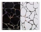 Продажи с возможностью горячей замены панели из ПВХ для внутренней декоративной