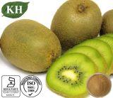 Vitamina C nutriente dell'estratto della frutta di Kivi del rifornimento della fabbrica alta