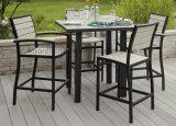 Neuer moderner europäischer Möbel AluminiumPolywood rückseitiger Stuhl-Handelsstab-Möbel-Set