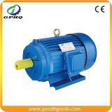 Motore elettrico a tre fasi di Y250m-4 75HP 55kw 440V