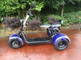 1000W 60V/20ah를 가진 세발자전거의 직업적인 제조자