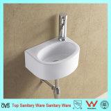 Dissipateur ovale de meubles-lavabos Bassin pour laver les vêtements