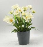 鉢植えな現代結婚式の装飾の人工花