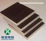 Xingang 상표 필름은 표준 품질 합판 브라운 필름 WBP 접착제 4X8X18를 직면했다