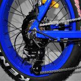 20 인치 500W 뚱뚱한 타이어 E 자전거 (RSEB-507)