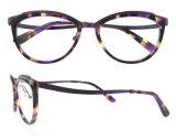 Blocchi per grafici viola degli occhiali delle donne del titano del blocco per grafici di Eyewear di qualità