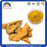 Nahrungsmittelfarbstoff-Gelbwurz Extact Kurkumin