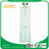 중국 LED는 인기 상품 가정 정원 램프를 위한 최신 60의 W 태양 LED 가로등 정가표를 제조한다