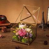 La promoción preservó la flor para el regalo de la tarjeta del día de San Valentín de la Navidad