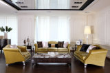 Conjunto vivo barato del sofá de la tela de Roon