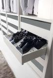 옷장에 있는 현대 목제 침실 가구 도보