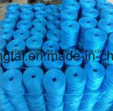 Corde de pp employant pour l'emballage (ANSHI04)